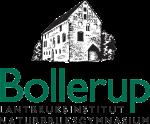 Bollerup_logo_trans